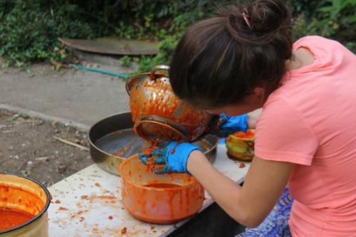 Domashen shipkov marmalad